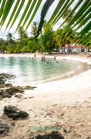 La Plage de l'Anse Figuier